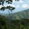 view at Osa Mountain Village Resort