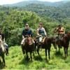 Horseback Riding 5
